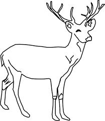 szkic-opakowania-z-jeleniem